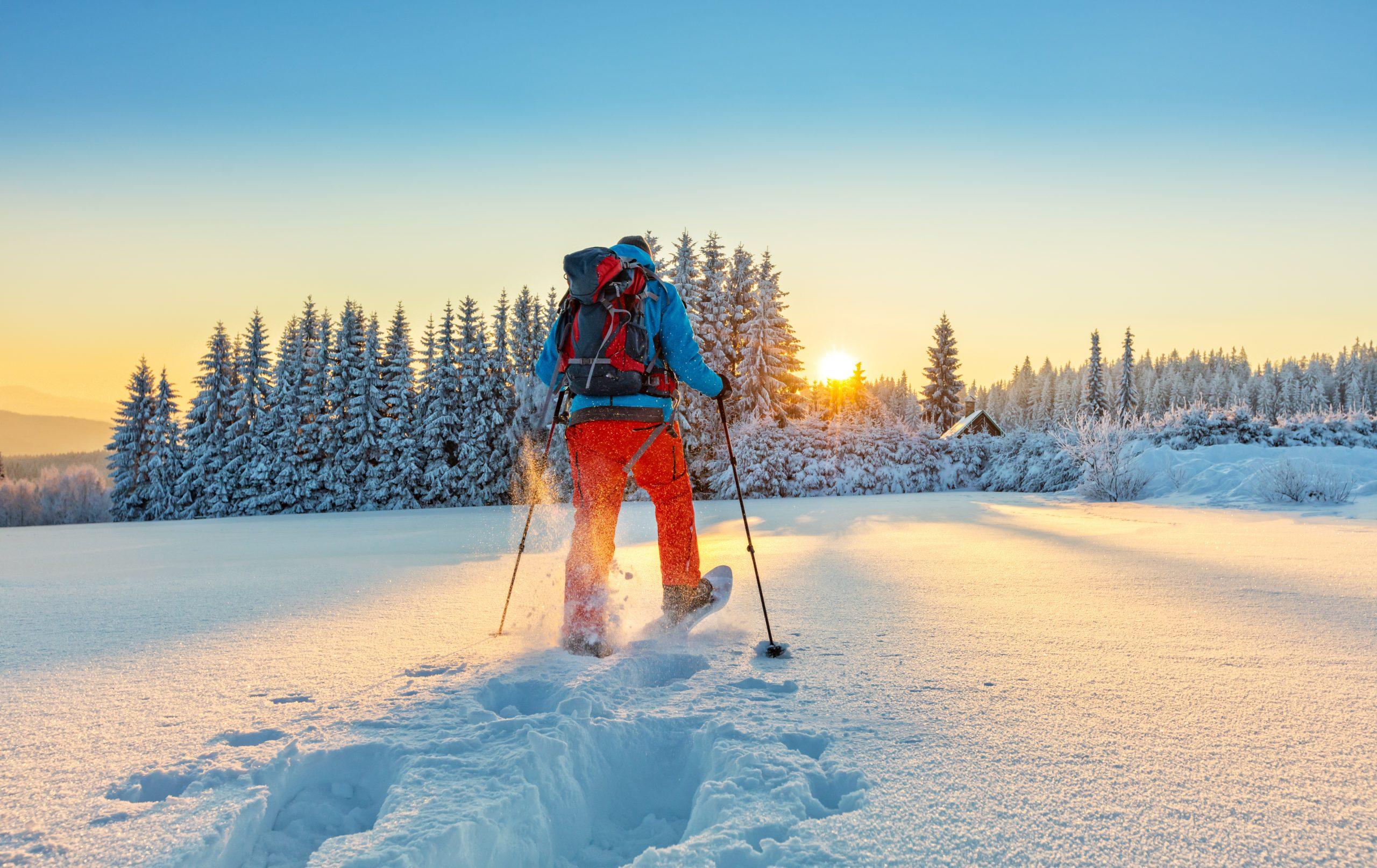 snowshoeing_huge